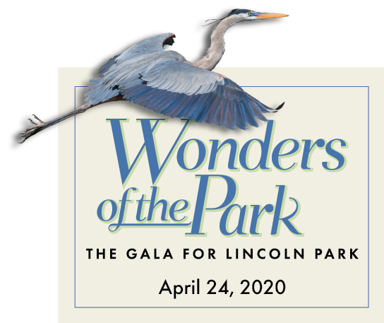 Wonders_2020Header(SMALL-Heron)-1.41-02
