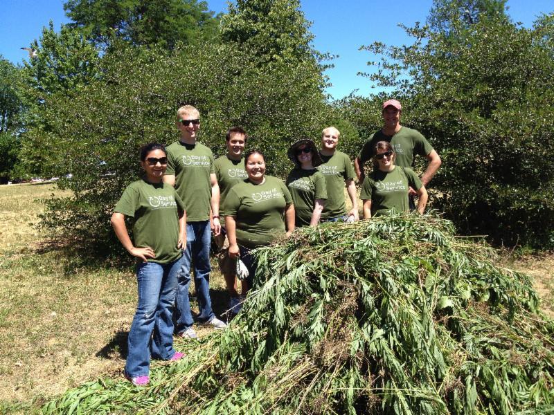 Schneider small work group